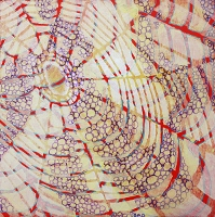 "Brooke Mullins Doherty, ""Red Web"""